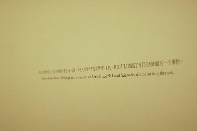 Shanghai Biennale 2012_7